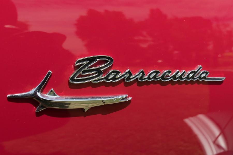 2020 Dodge Barracuda ?