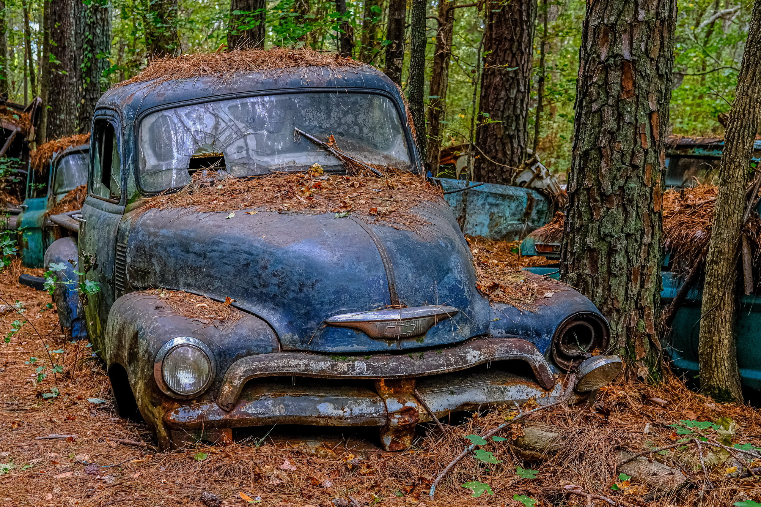 Cash For Junk Cars Wilmington, NC — Get an Offer for Your Scrap Car Now!