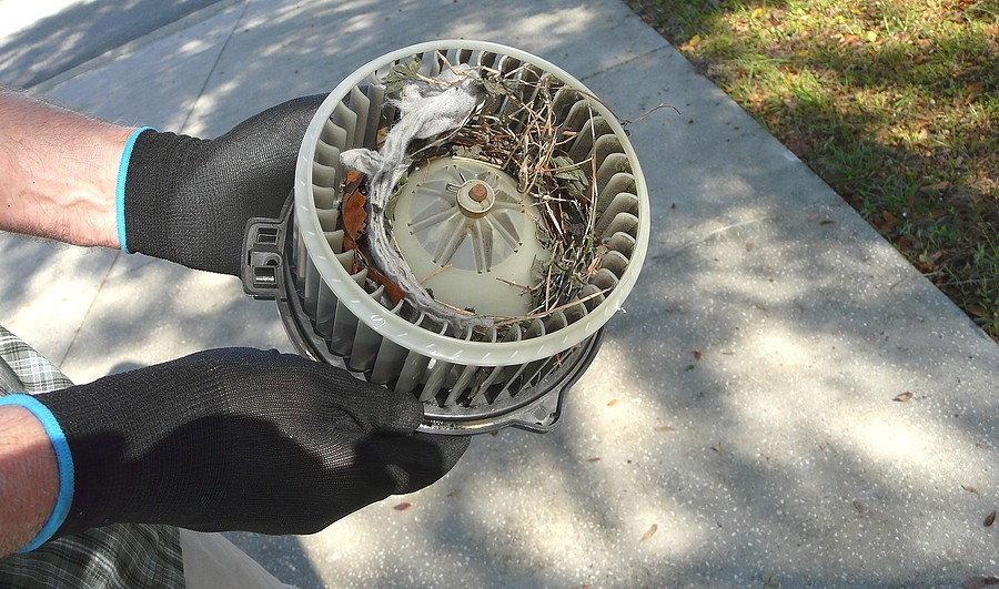 What is The Average Blower Motor Replacement Cost?
