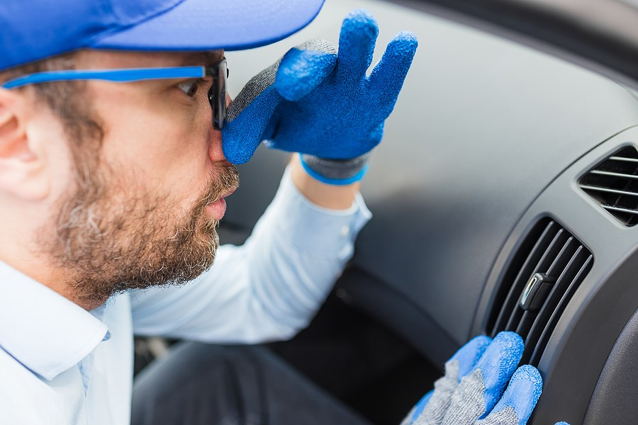 What Causes a Rotten Egg Smell in Cars? Three Possible Culprits