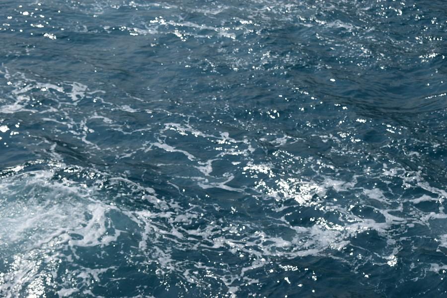 Can Sea Foam Damage Your Engine?